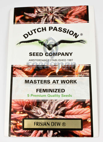 Frisian Dew Feminised Seeds - BITCOINSEEDSHOP - 1