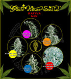 Sativa Mix Feminised Seeds - BITCOINSEEDSHOP - 1