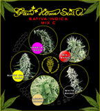 Sativa Indica Mix C Feminised Seeds - BITCOINSEEDSHOP - 2