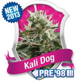 Kali Dog Feminised Seeds - BITCOINSEEDSHOP - 1