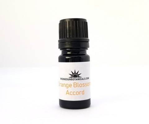 Orange Blossom Accord