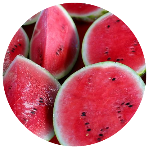 Watermelon Seed Oil (Citrullus lanatus)