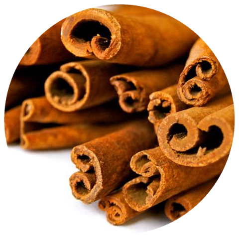 Cinnamon (Cinnamomum burmannii) Organic CO2 Extract