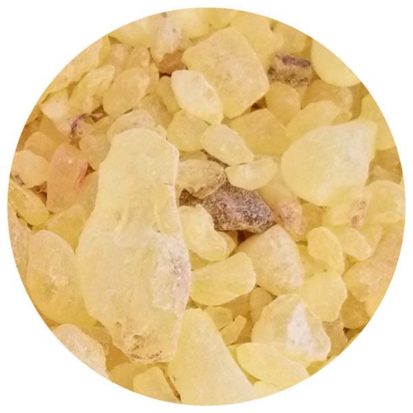 Frankincense and Myrrh Resin Infusion Oil