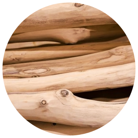 Sandalwood (Santalum album) Organic Essential Oil