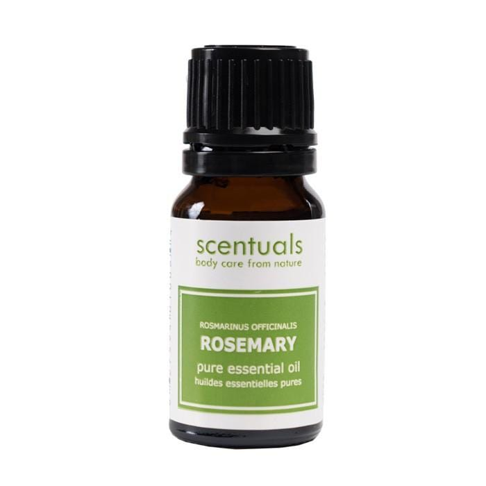CLEARANCE SCENTUALS Essential Oil Rosemary