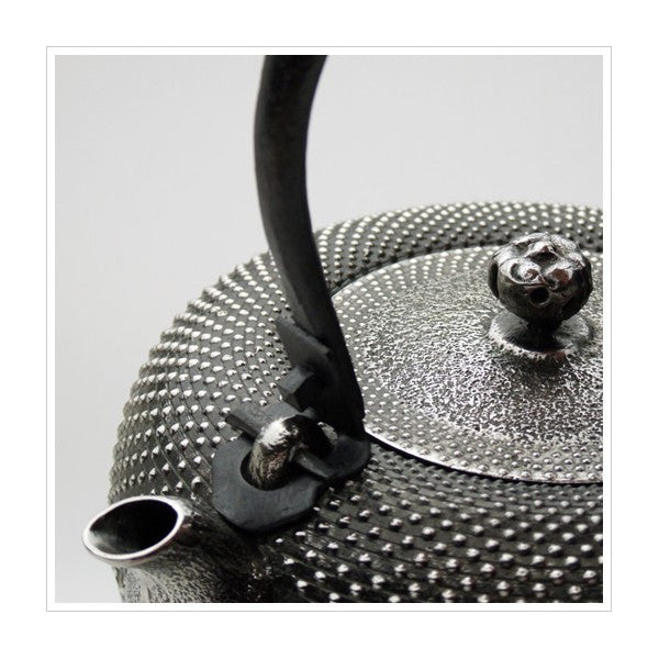 Authentic TETSUBIN cast Iron kettles