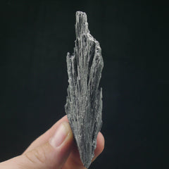Black Kyanite - Enchanted Crystal