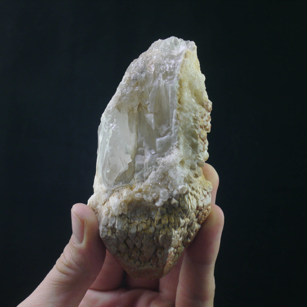Lightbrary Quartz (a-451)