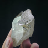 Epidote in Quartz (a-630)