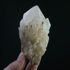 Lightbrary Quartz (a-656)