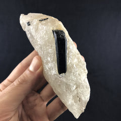 Tourmaline in Quartz - Enchanted Crystal