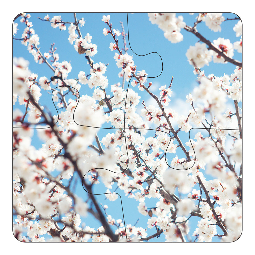 JIGSAW COASTERS Apricot Blossoms 4pc