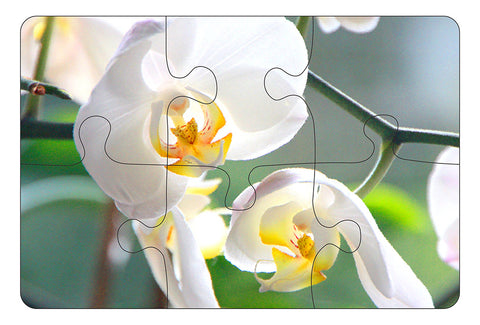 JIGSAW COASTERS Orchids 6pc