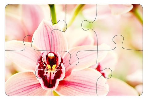 JIGSAW COASTERS Pink Orchid 6pc