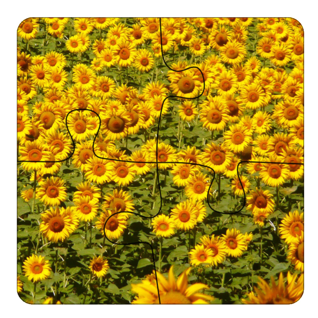 JIGSAW COASTERS Sunflowers 4pc