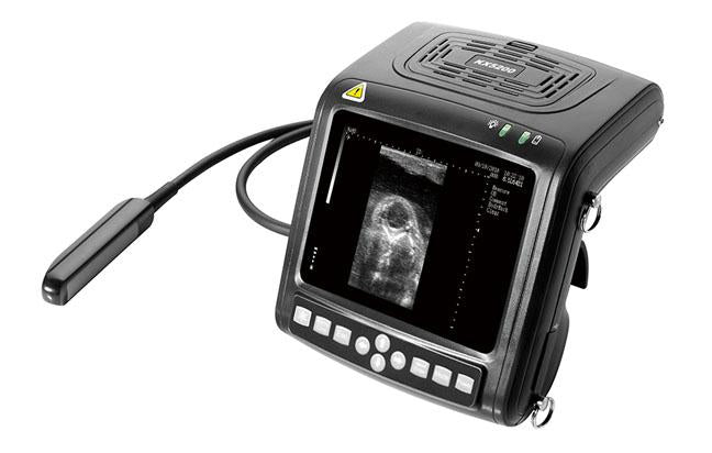 kaixin KX5200V veterinary ultrasound, production ultrasound, equine, bovine, canine, swine, feline, goat, Llama ultrasound scan, animal ultrasound, pregnancy testing