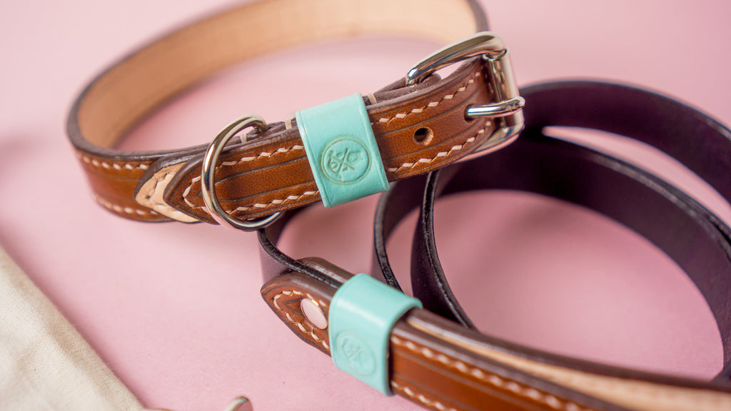 Bearytail Leather Co x Oh Tiny Heart - Handcrafted Leather Leashes and Bowties