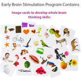 early brain stimulation image cards for babies