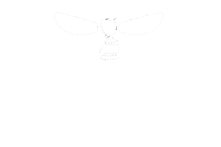 Honey Bee Beautiful