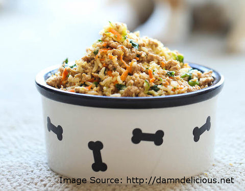 diy healthy dog food recipe with carrots and vegetables
