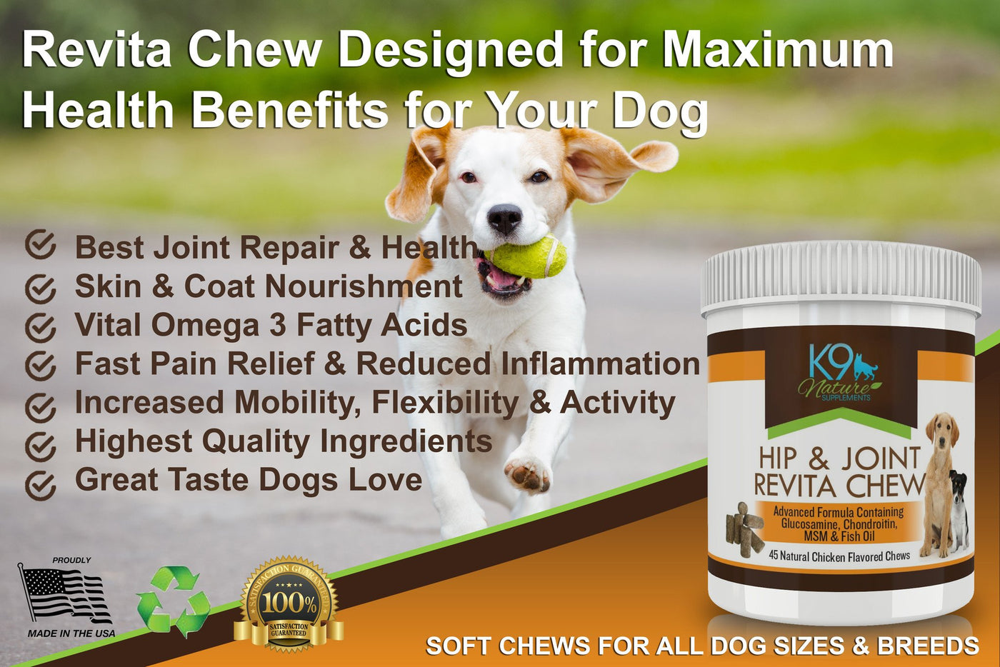Hip & Joint Revita Chews 3 Pack