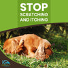 dog-itching-supplements-for-dogs
