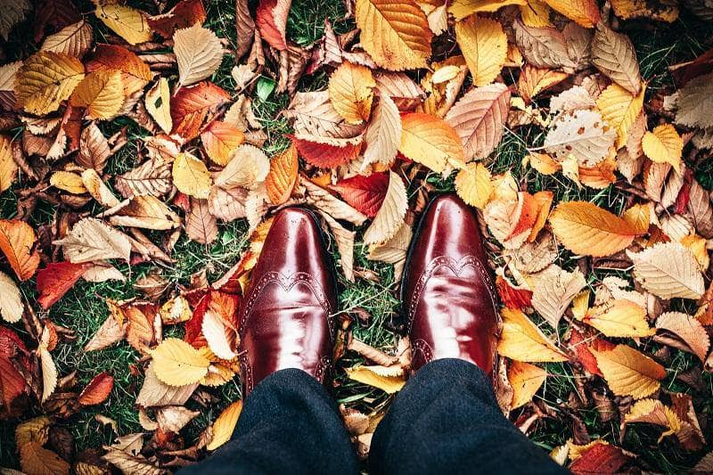 Essential Tips for Autumn Style