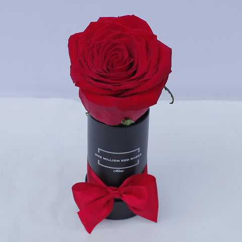 Classic Collection - Mini Box - Rose Rosse - Scatola Nera Baby