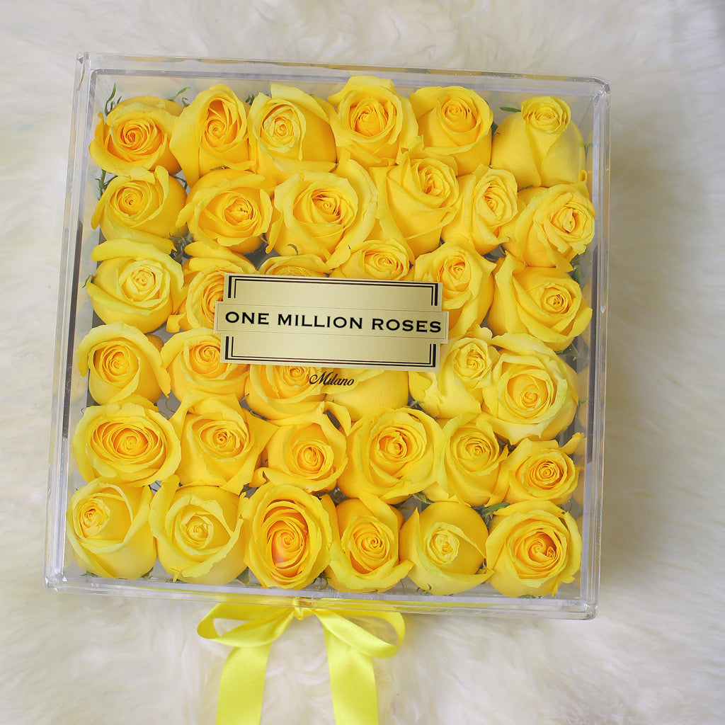 Crystal Collection - Crystal Box - Rose Rosse