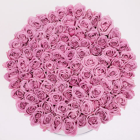 Classic Collection - One Billion Box - Rose Rosa - Scatola Bianca