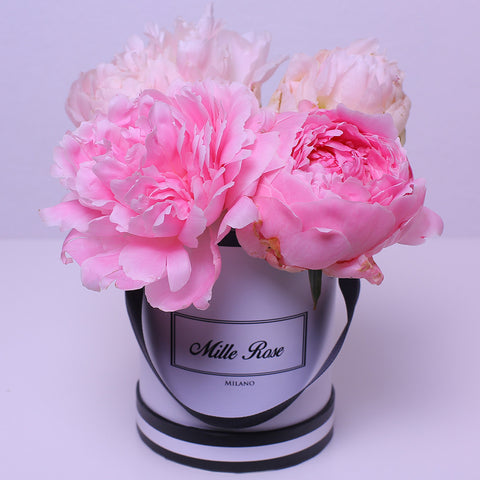 Mille Rose Collection - Mini Box - Peonie Rosa - Scatola Bianca