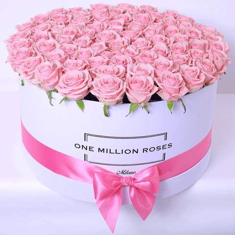 Classic Collection - One Million Box - Rose Rosa Cipria - Scatola Bianca