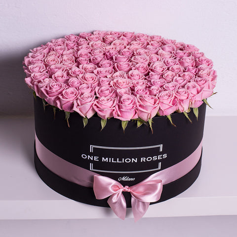 Classic Collection - One Million Box - Rose Cipria - Scatola Nera