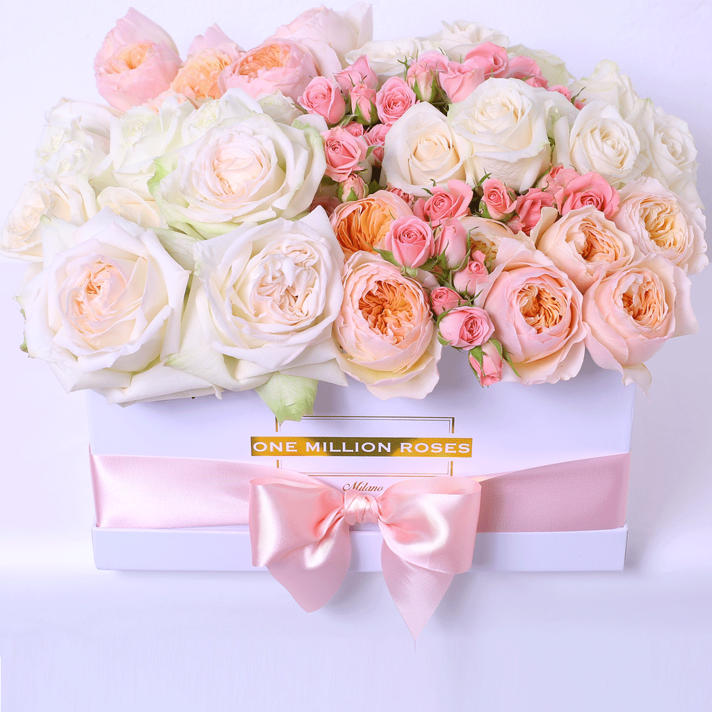 Classic Collection - Square Box - Rose Mix Excelsior - Scatola Bianca