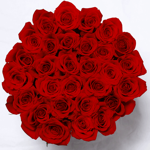 Classic Collection - Medium Box - Rose Rosse - Scatola Nera