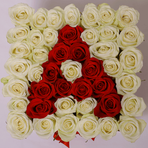 Custom Collection - Square Box - Rose Bianche e Rosse - Scatola Bianca