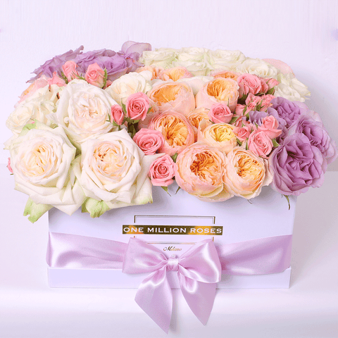 Classic Collection - Square Box - Rose Mix Viola Pesco Rosa Bianco - Scatola Bianca