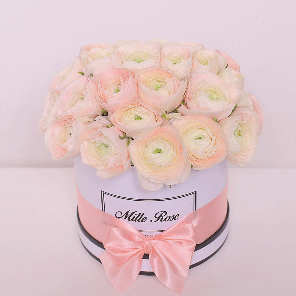 Mille Rose Collection - Small Box - Ranucolo - Scatola Bianca