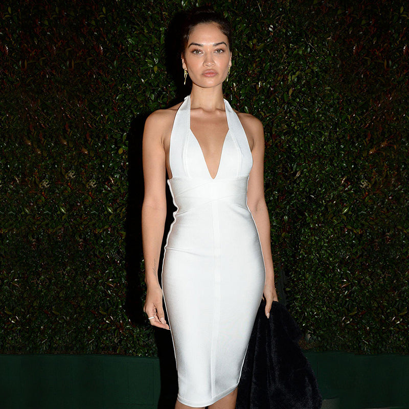 SHANINA SHAIK at WME Pre-oscar Party in Los Angeles 02/22/2019