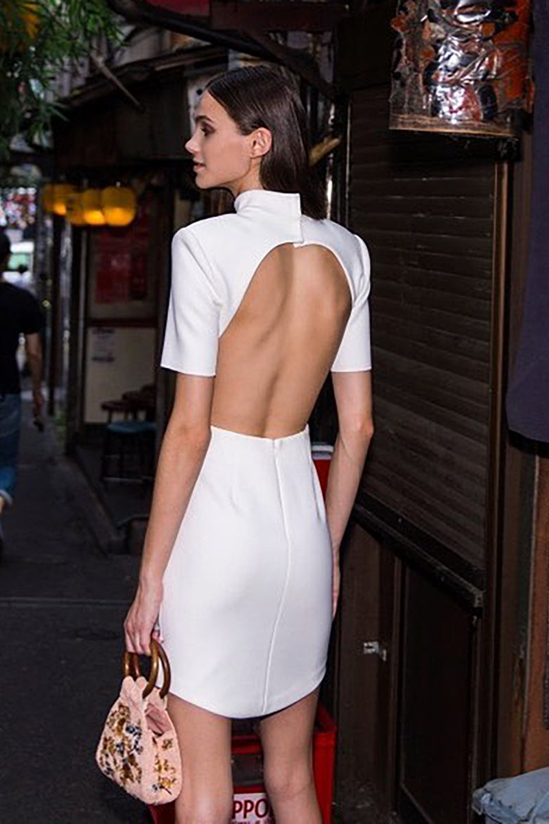 Sheath Short Sleeve Bodycon Backless Stand Neck Dress - CHICIDA