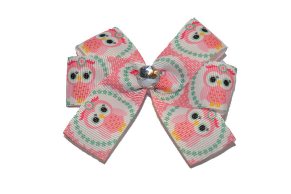 Pink Owl with Mint Green Border Bow (Animal)