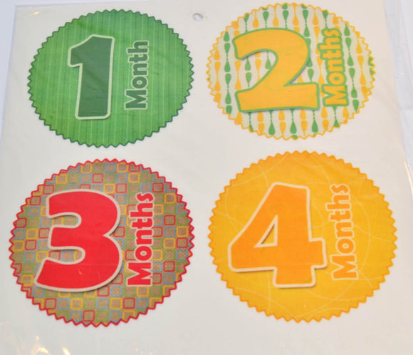 Milestone Stickers - Yellow Red Green Pattern - Dream Lily Designs