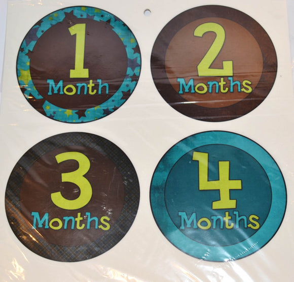 Milestone Stickers - Brown Teal Green Patterns - Dream Lily Designs