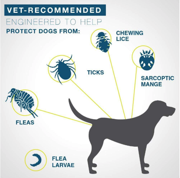 Flea & Tick Collar®