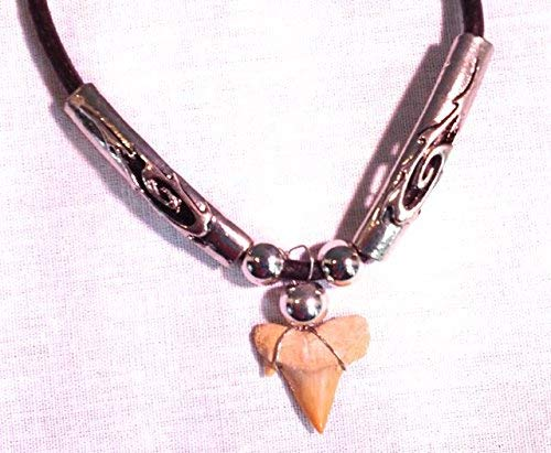 "Fossil Shark Tooth Necklace with Silver Beads - Adjustable Length 18""-21"" - dinosaursrocksuperstore"