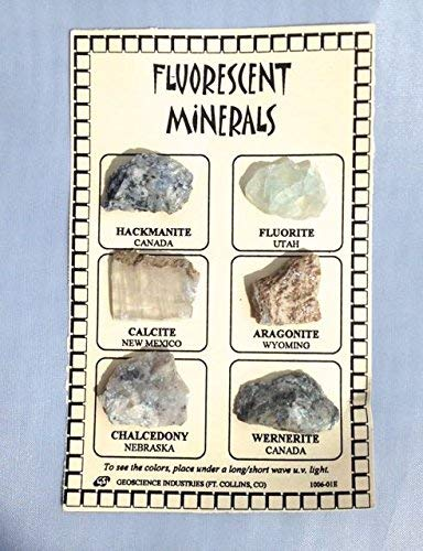 Fluorescent Mineral ID Chart with 6 samples from DINOSAURS ROCK® - dinosaursrocksuperstore