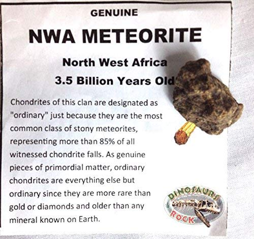 Genuine Meteorite - from Northwest Africa - 1 Billion Years Ol