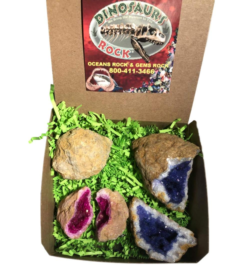 Geode Gift Collection - Set of 3 - Pink and Blue Dyed Split and 1 Crack-Your Own Natural - with Gift Box - dinosaursrocksuperstore