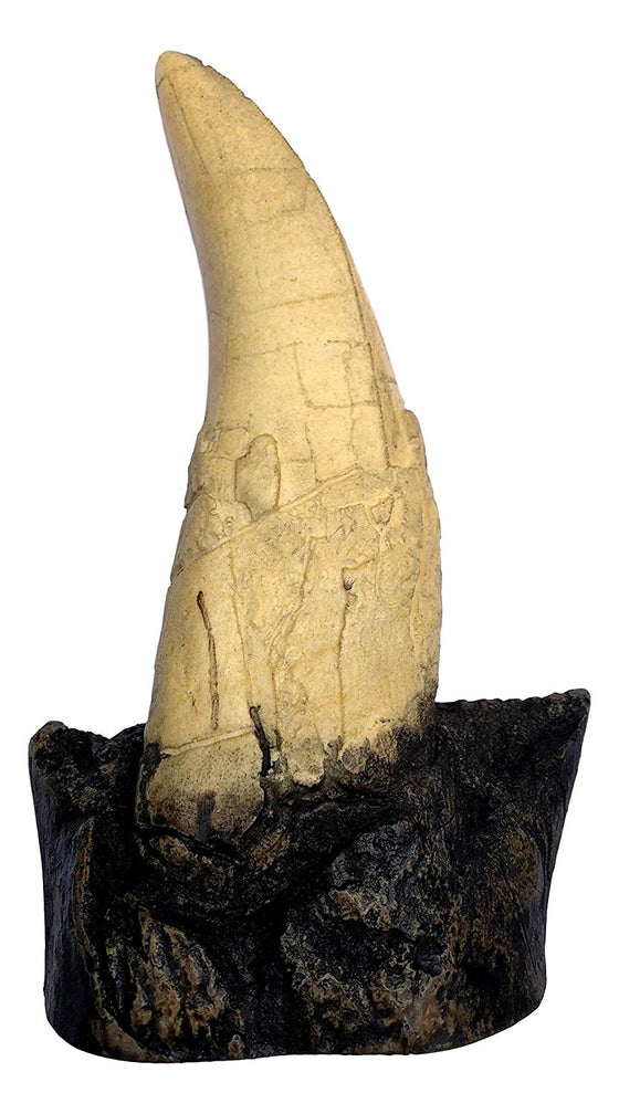 "T-Rex - Tyrannosaurus Rex - Dinosaur Tooth Fossil Replica On Base - 7.5"" high - No Stand Needed! - dinosaursrocksuperstore"